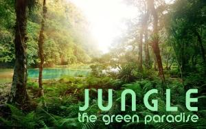 Jungle the green paradiese